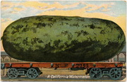 [Railroad freight car transports a giant watermelon]