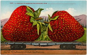 [Railroad flat car loaded with giant strawberries]