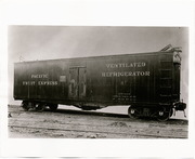 [Pacific Fruit Express Company ventilated refrigerator car 81]