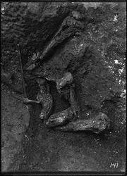 Pit 9. Elephant jaws and femur and mastodon humerus. (RLB-141)