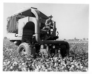 Mechanical Cotton Picker, Tulare County, Calif., 1940s