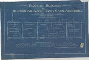 Plat of Survey of Blocks XII and XIII Fair Oaks Addition
