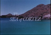 Isles of Cortez/Sea of Cortez: Scientific Expedition Parts I and 2