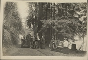 Automobile passengers under the big trees
