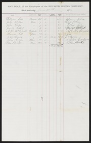 Bulwer Mining Co., Payroll and Statements, 1877/1879