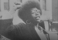 Activism: Civil Rights and Black Power Activism